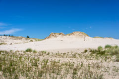 在Leba的沙丘,波兰 库存照片