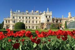 在Lednice城堡前面的郁金香 库存图片