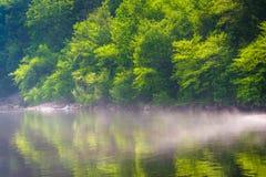 在Lehigh河的雾在Lehigh峡谷国家公园,宾夕法尼亚 库存图片