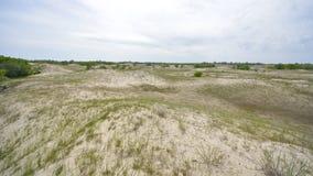 在Letea森林沙丘的全景 免版税库存照片