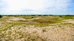 在Letea森林沙丘的全景 免版税库存图片