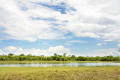 在Lifupa水坝的美好的天,卡松古 库存照片
