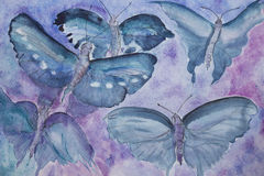 在liliac背景的绿松石蝴蝶 免版税库存图片