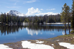 在Lilly湖的春天 前面Uinta Wasatch贮藏所的国民 库存照片