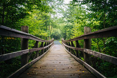 在Limberlost的走的桥梁在Shenandoah全国Pa落后 库存照片