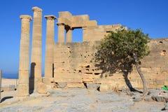 在Lindos、罗得岛、希腊、蓝天、橄榄树和美好的海视图上城的希腊文化的stoa的专栏在后面 库存照片