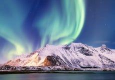 在Lofoten海岛,挪威上的极光borealis 在山上的绿色北极光 与极光的夜空 夜冬天l 图库摄影