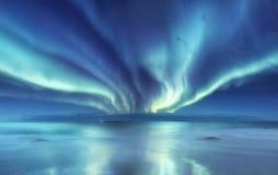 在Lofoten海岛,挪威上的极光borealis 在山上的绿色北极光 与极光的夜空 夜冬天l 免版税库存图片