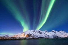 在Lofoten海岛,挪威上的极光borealis 在山上的绿色北极光 免版税库存照片