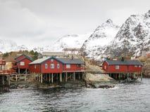 在Lofoten海岛,挪威上的Rorbuer 免版税库存图片