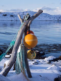 在Lofoten,挪威的五颜六色的渔浮子 库存照片
