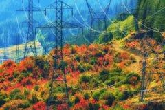 在Lolo通行证Mt的秋天 敞篷国家森林 库存图片