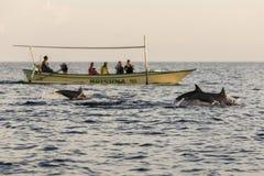 在Lovina海滩,在日出期间的巴厘岛的美丽的小船与海豚 免版税图库摄影