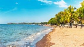 在Lovina的海滩 免版税图库摄影