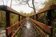 在Lugton水, Dalry的人行桥 免版税库存照片