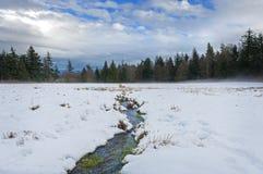 在Lummi海岛上的冬天风景 图库摄影