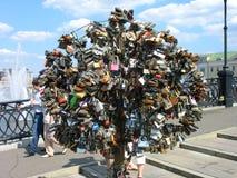在Luzhkov (Tretyakov)桥梁的爱护树木在莫斯科 库存照片
