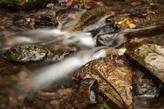 在Lydford峡谷的秋天颜色 库存照片