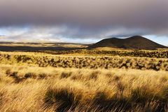 在MÄ  malahoa高速公路的绝种火山,大岛夏威夷 免版税库存图片
