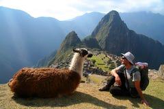 在Machu Picchu的游人和骆马 免版税库存图片