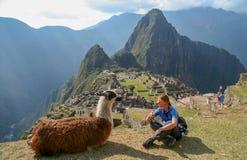 在Machu Picchu的游人和骆马 图库摄影