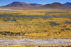 在Machuca附近的风景看法在阿塔卡马沙漠 库存照片