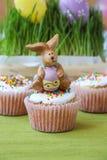 在maffin的复活节兔子 库存照片