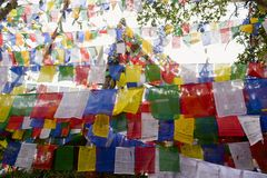 在Mahakal寺庙的五颜六色的佛教祷告旗子 免版税库存照片