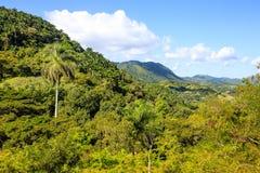 在Manicaragua,古巴附近的风景 库存照片