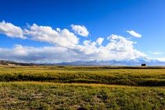 在Mansarovar湖的日落 免版税库存图片