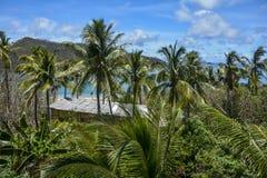 在Mantaray海岛,斐济的美好的棕榈树视图 免版税库存照片