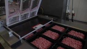 在manufacrory的加料碎肉包装 股票录像