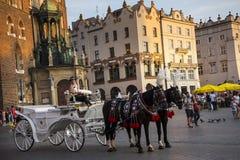 在Mariacki大教堂的落日在集市广场在克拉科夫波兰 免版税图库摄影
