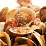 在marinara调味汁的蛤蜊 免版税库存图片