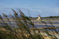 在Marsala的风车 免版税图库摄影