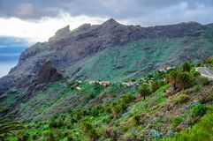 在Masca村庄,特内里费岛附近的山在Canarian海岛 库存照片