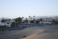 在Maspalomas、棕榈树和一片绿洲的沙丘的日落在背景中 免版税库存照片