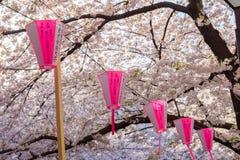 在Meguro河,东京,日本的樱花节日 免版税图库摄影