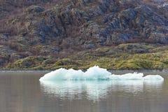 在Mendenhall Glacier湖的冰 免版税库存图片