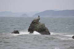 在Meoto Iwa,伊势神宫的孤立岩石 免版税库存照片