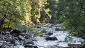 在merced河的急流在优胜美地 股票录像