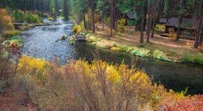 在Metolius河的秋天早晨 免版税图库摄影