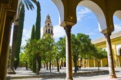 在Mezquita里面在科多巴,西班牙 免版税库存照片