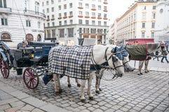 在Michaelerplatz的传统古板的fiacres在维也纳附近,奥地利Hofburg  库存照片