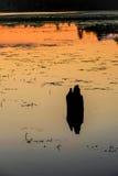 在Michigan湖反射的抽象橙色日落 库存图片