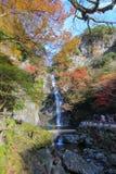 在Minoo瀑布,大阪,日本的秋天 这瀑布是Minoo公园` s主要自然吸引力,与高度33米 免版税库存照片