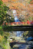 在Minoo瀑布,大阪,日本的秋天 这瀑布是Minoo公园` s主要自然吸引力,与高度33米 库存照片