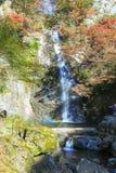 在Minoo瀑布,大阪,日本的秋天 这瀑布是Minoo公园` s主要自然吸引力,与高度33米 免版税图库摄影