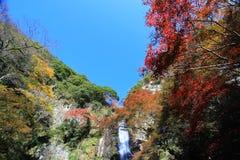 在Minoo瀑布,大阪,日本的秋天 库存图片