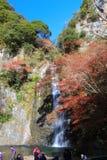 在Minoo瀑布,大阪,日本的秋天 免版税库存图片